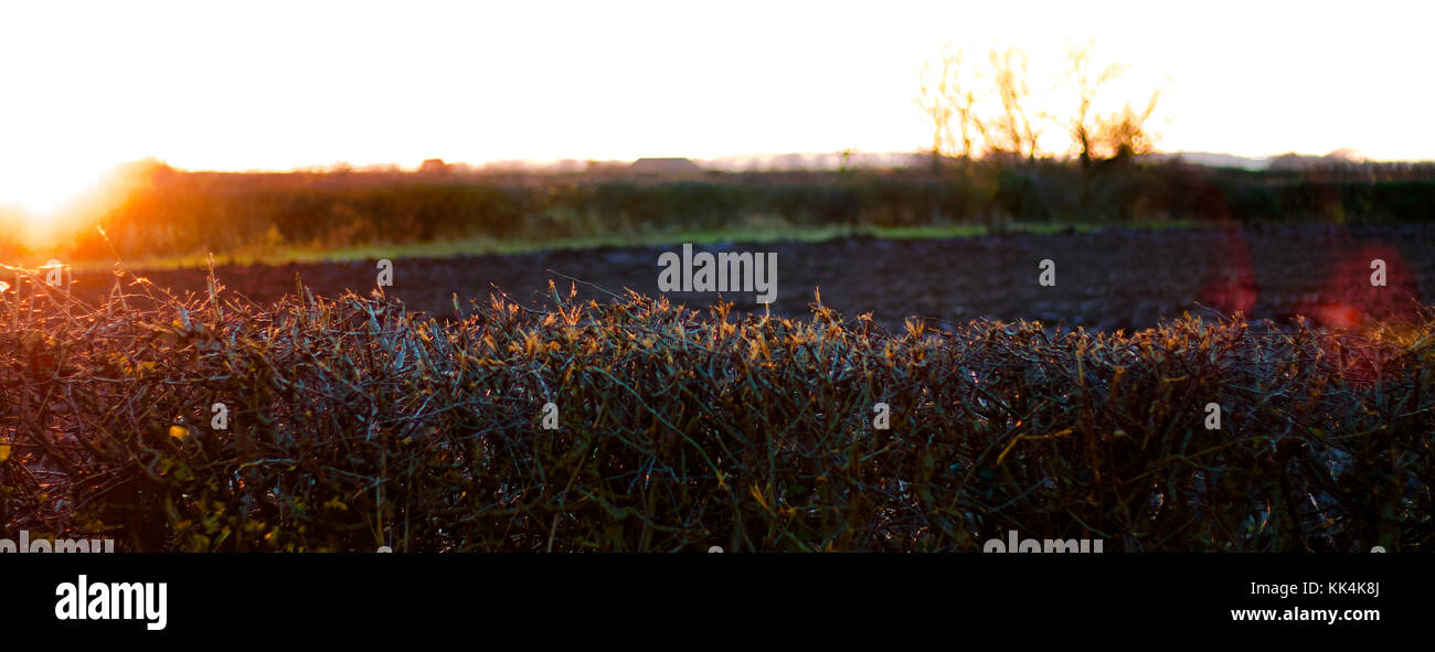 Early Sunset in Winter - Stock Image
