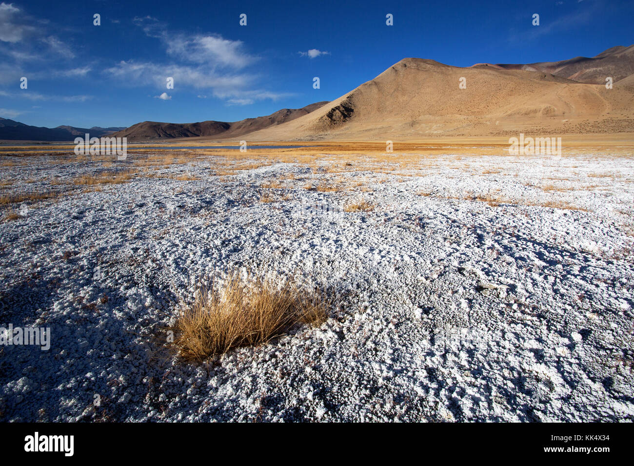 Barren landscape and layers of salt on a clear autumn day at a fluctuating salt lake Tso Kar, Ladakh, India - Stock Image