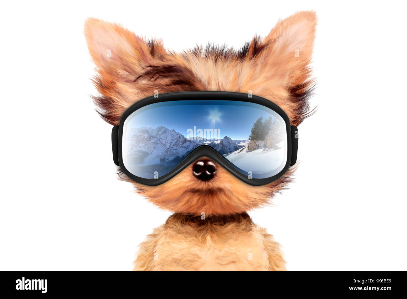 Funny Dog wearing ski goggles  Winter glass mask with