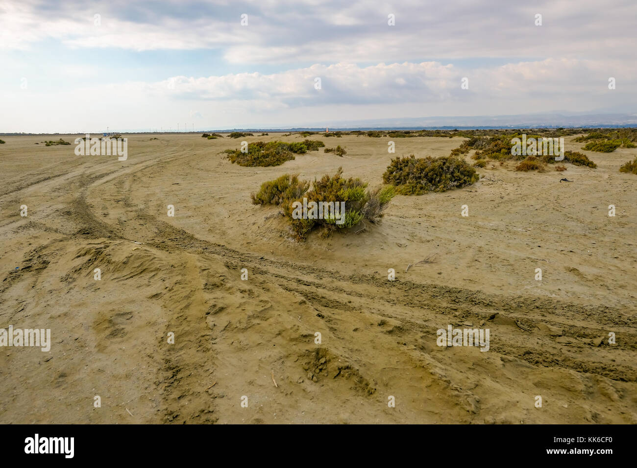 Track in the desert with tyre marks and scrubby growth.  Natural and vast area. - Stock Image