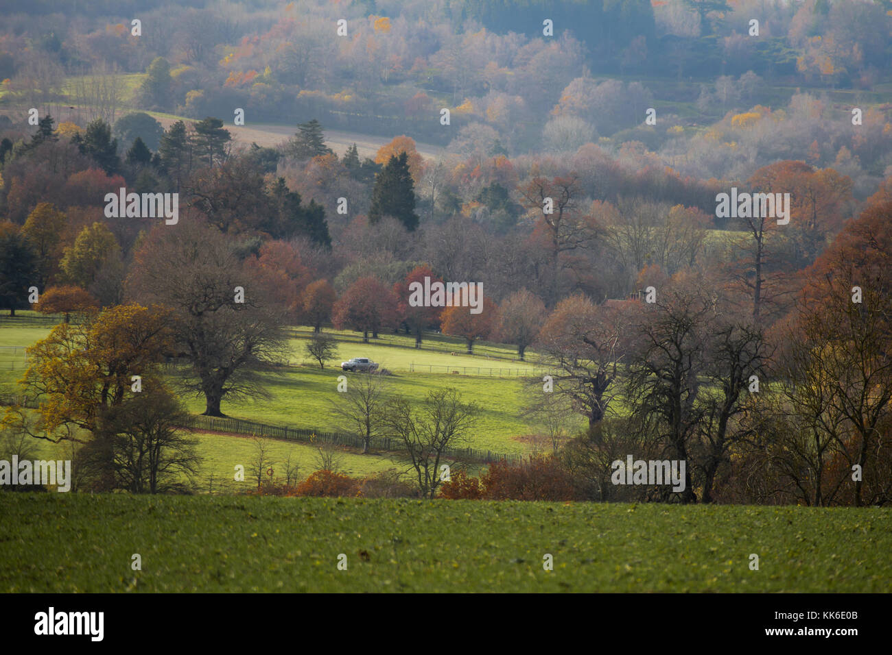 Penshurst Place Tonbridge Kent autumn colours  winter walk tourist attraction south east england ancestral home - Stock Image