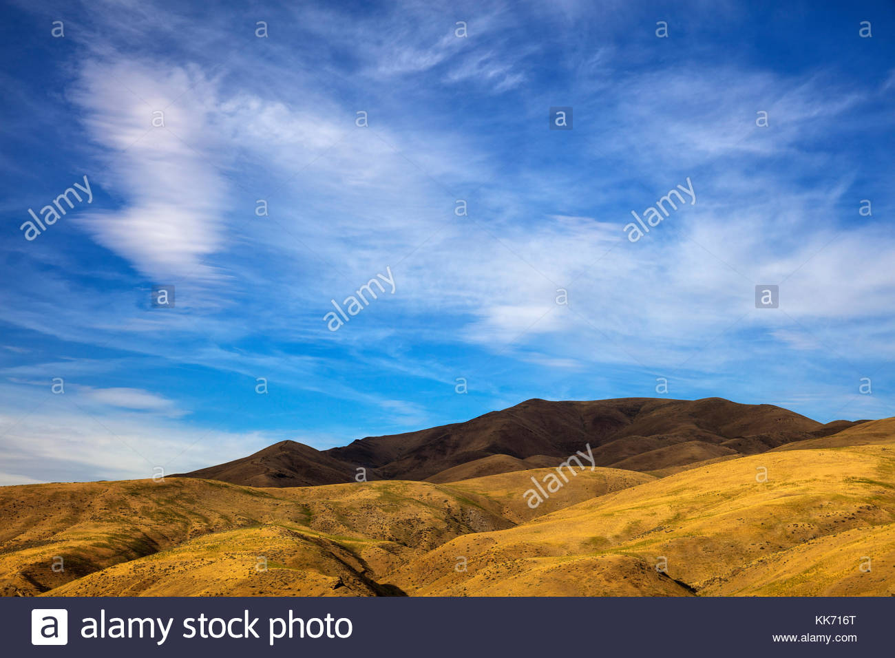 The summit of Dead Indian Ridge, located in Washington County Idaho, is in deep shadow as a band of altostratus - Stock Image