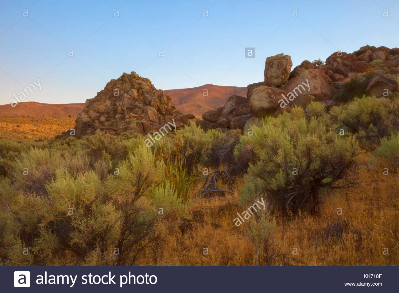 Diffused golden light at sunrise colors the high desert landscape and rock outcroppings in the Mormon Basin of Malheur - Stock Image