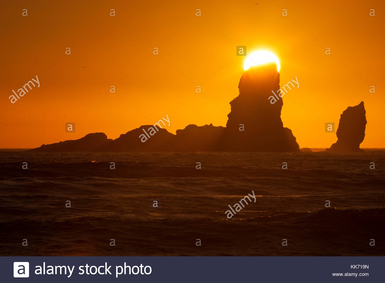 The setting sun seems to be balanced on one of the Sea Lion Rocks, a series of sea stacks off the northern Oregon - Stock Image