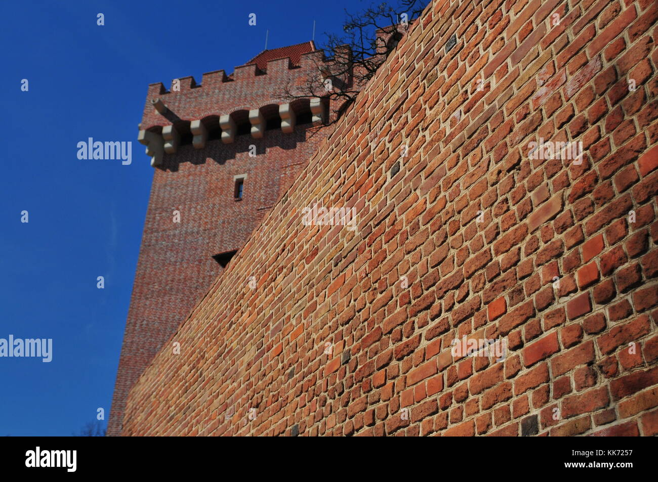 poznan royal castle poland 2016 viewof side brick wall and tower