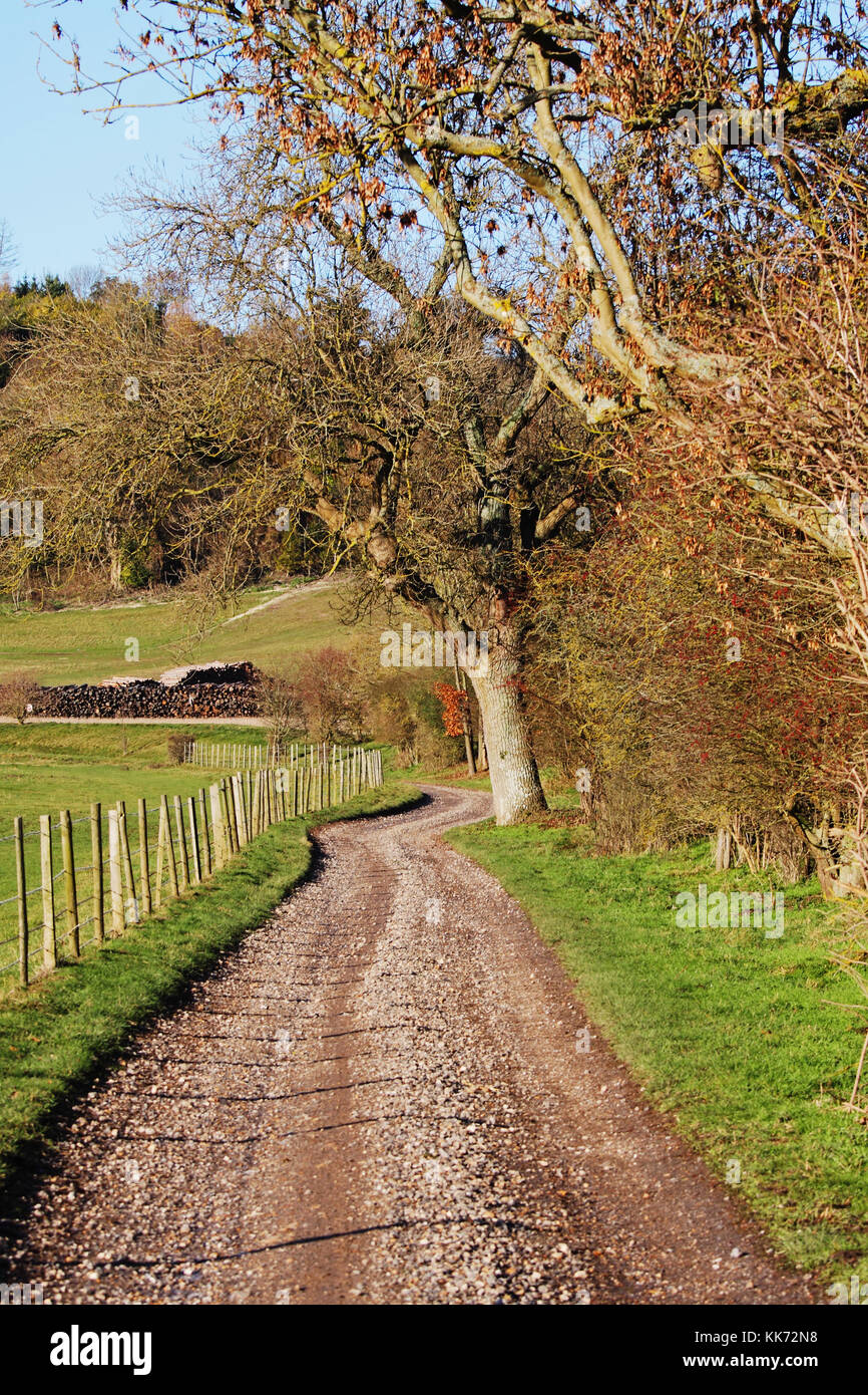 An English Rural Landscape in the Chiltern Hills with a farm track beside a field - Stock Image