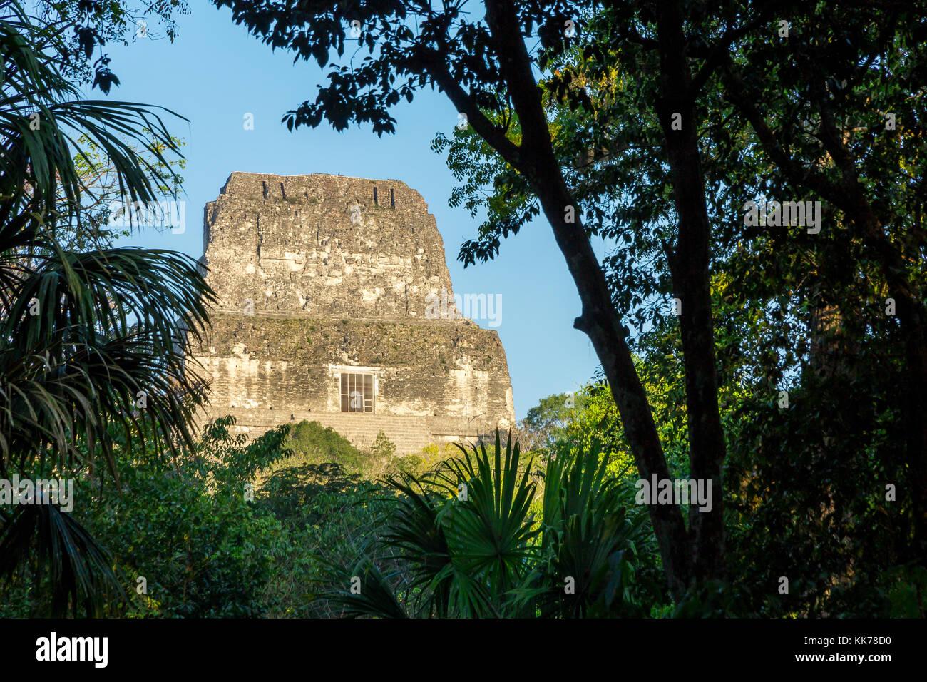 View to Temple IV   Tikal   Guatemala - Stock Image