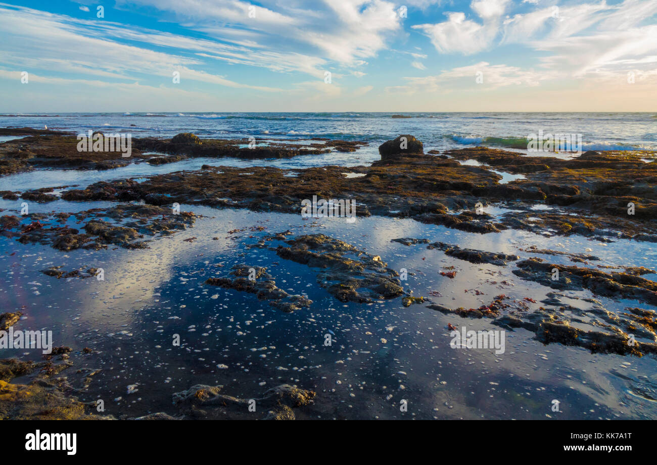 Fitzgerald Marine Reserve  ocean sunset and tide pools - Stock Image