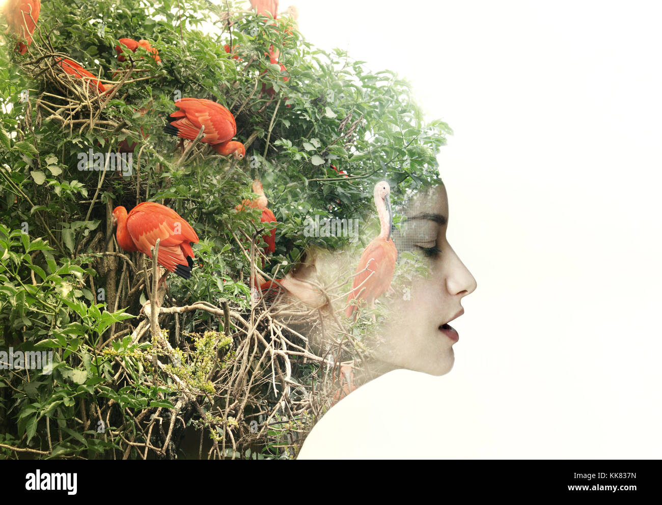 Artistic surreal female profile in a metamorphosis with nature - Stock Image