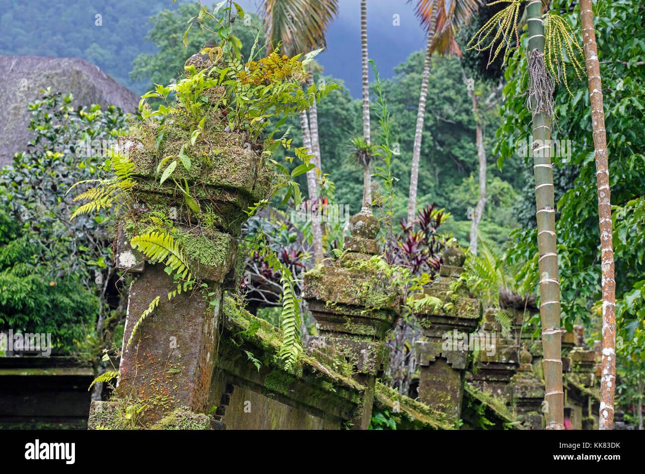 Jungle vegetation overtaking Pura Luhur Batukaru, Hindu temple in Tabanan on southern slope of Mount Batukaru, volcano - Stock Image