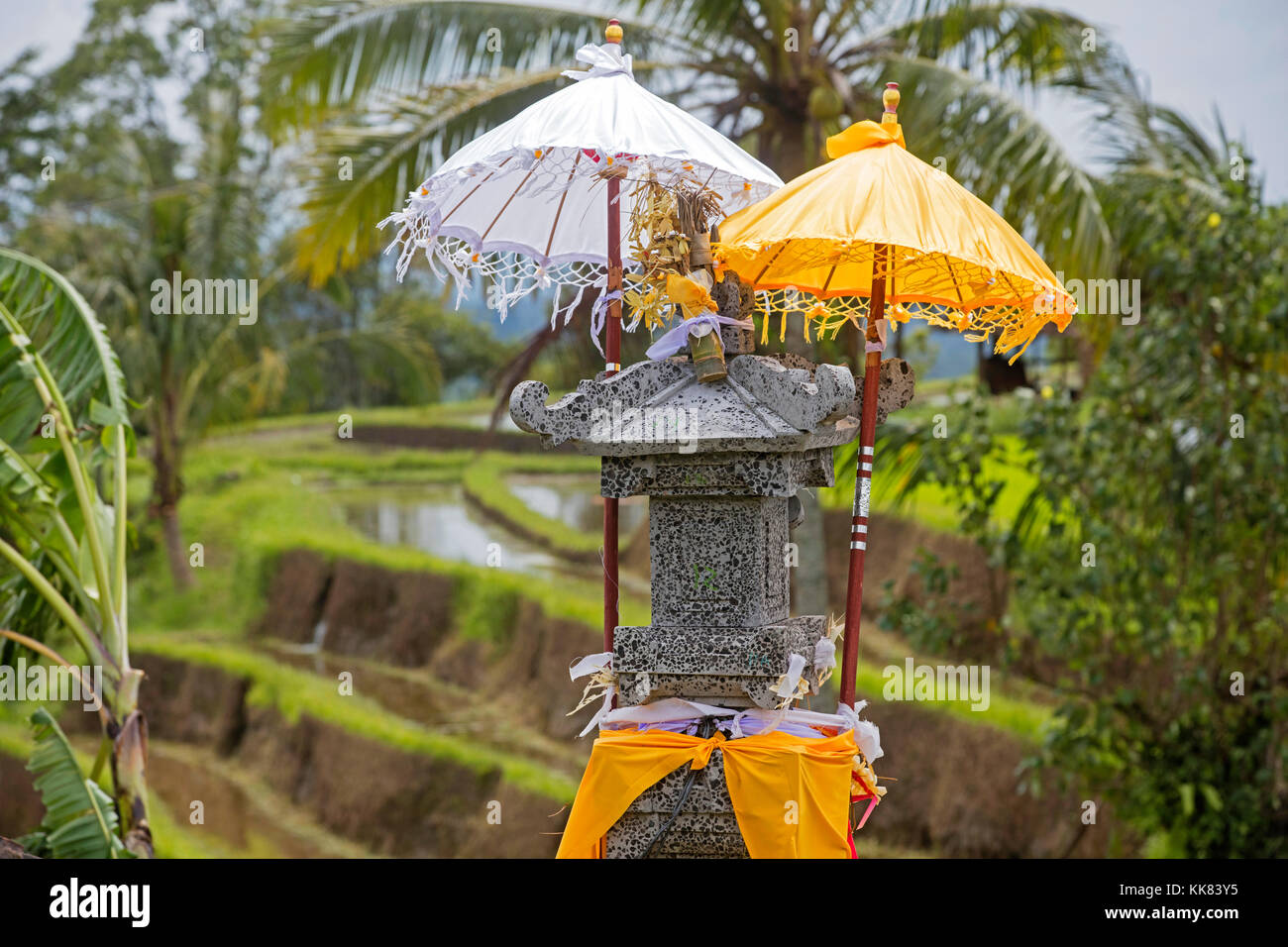 Little Hindu altar / sanggah in the Jatiluwih terraced paddy fields, rice terraces in the highlands of West Bali, - Stock Image