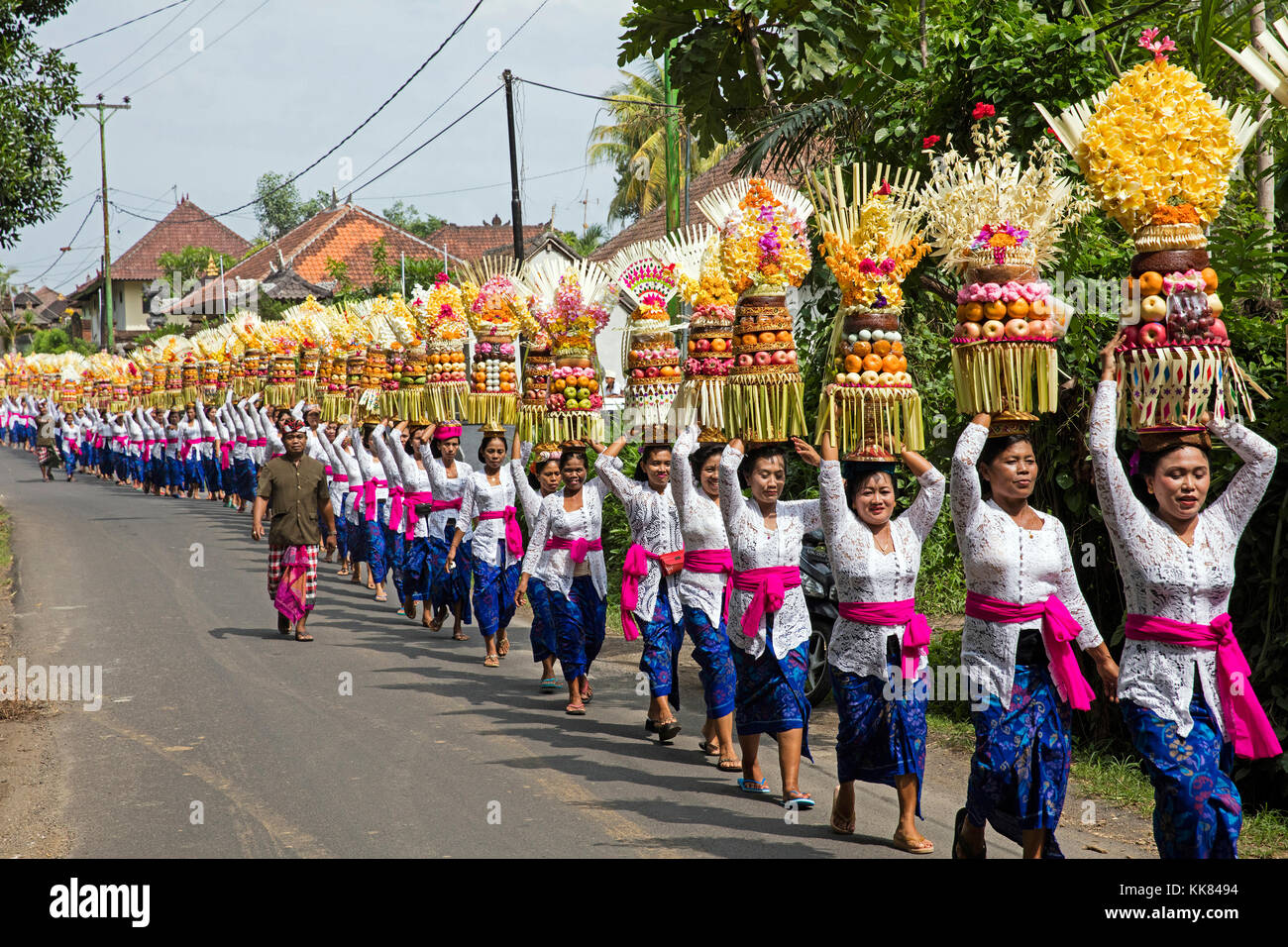 Procession of traditionally dressed women carrying temple offerings / gebogans on their head near Ubud, Gianyar - Stock Image