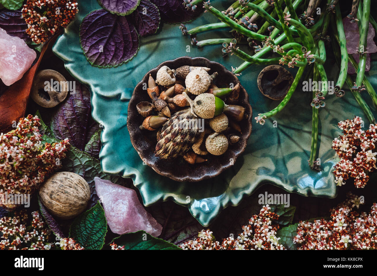 A Collection of Specimens, Flowers and Rose Quartz Crystals. - Stock Image
