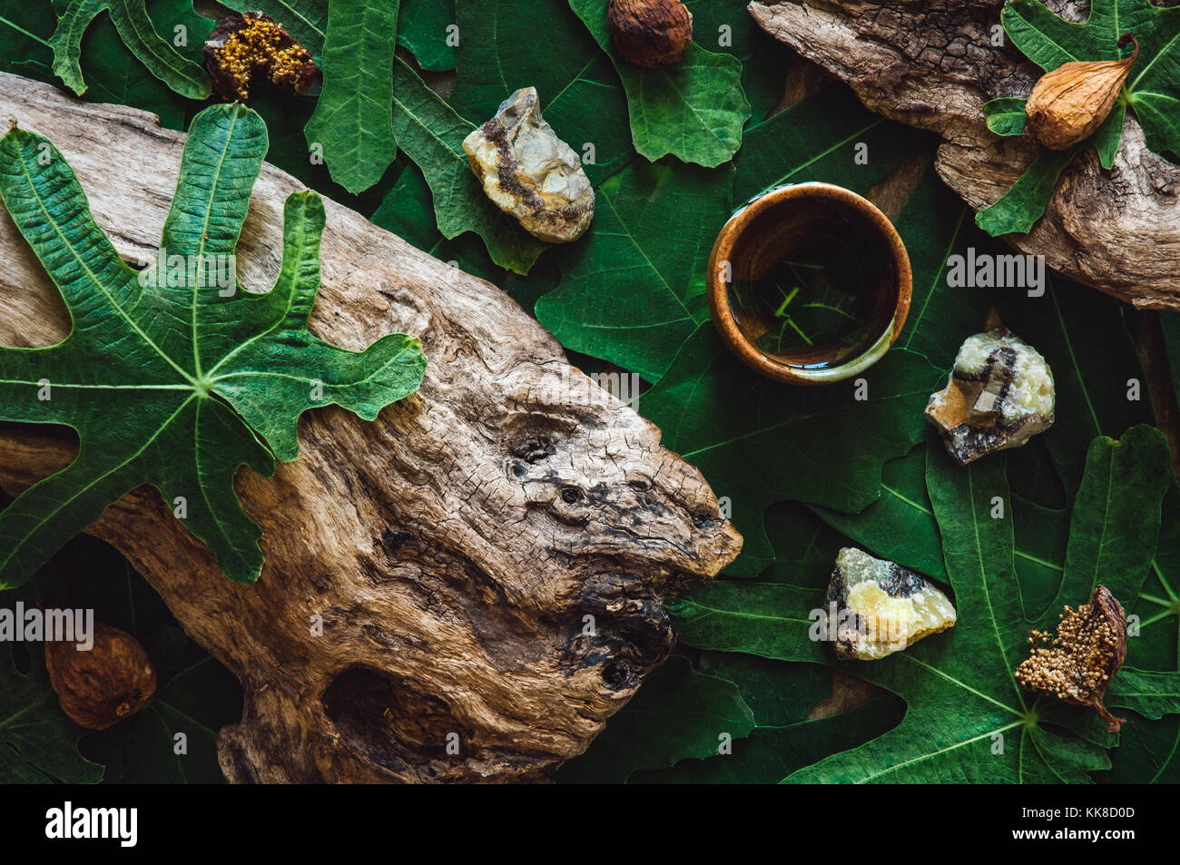Fig Leaves with wood, septarian crystals and dried figs. Stock Photo