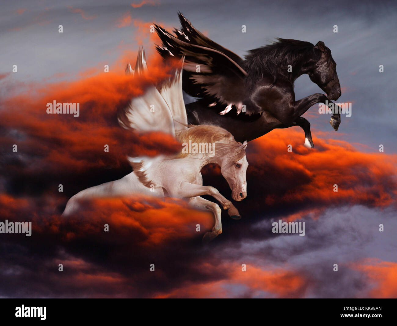 Two magical winged horses, one black and the other white, fly through dramatic red and black clouds. - Stock Image