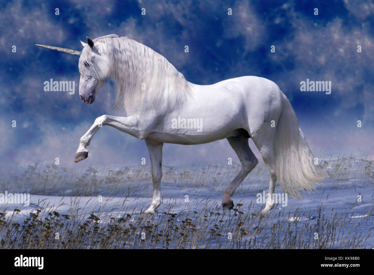 A beautiful, mystical white unicorn stallion stands in the snow with a dramatic star filled sky behind him. - Stock Image