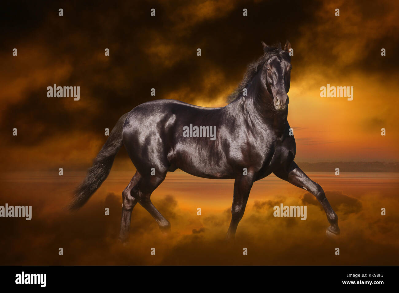 A magnificent black stallion trots through a dramatic orange and black misty, cloudy landscape. - Stock Image