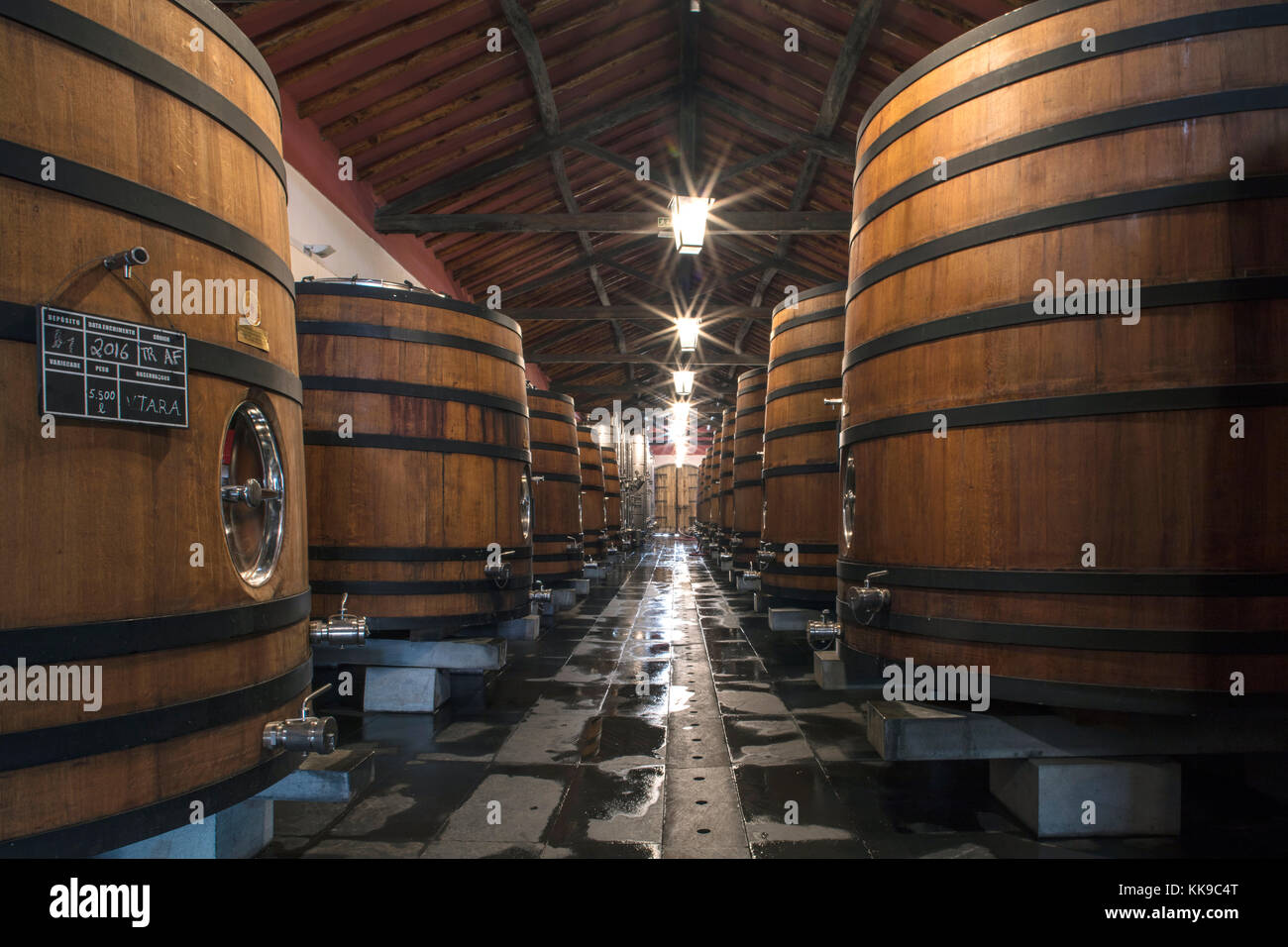 Wine barrels storing award-winning Portuguese wine in the cellars of the Reynolds vineyard and winery near Arronches, - Stock Image