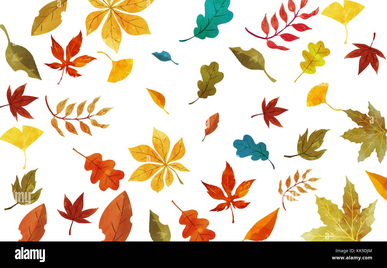Frame in autumn - a maple leaf, hanbok, traditional wrapping cloth ...