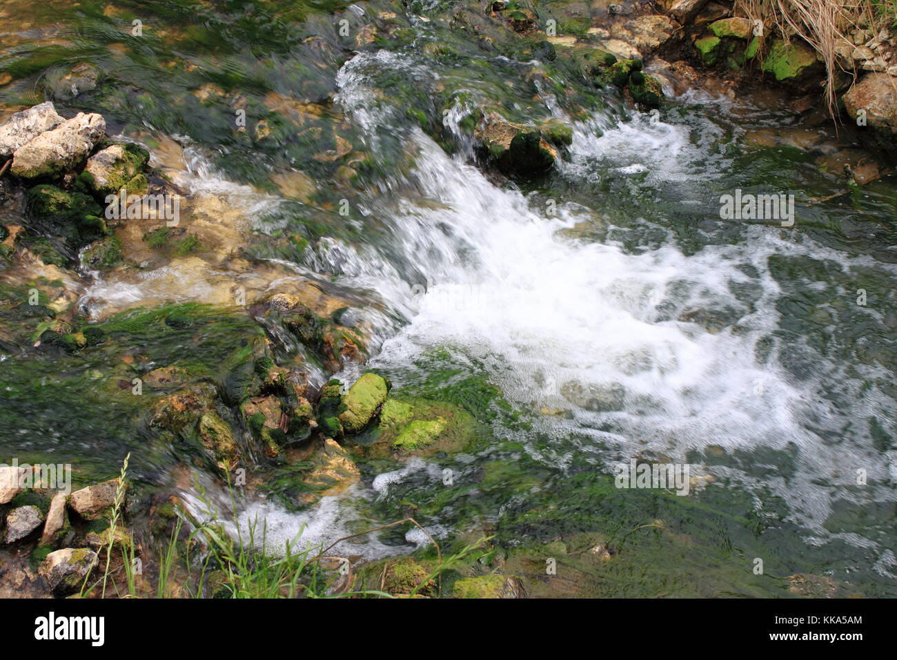 Rapids on a river - Stock Image