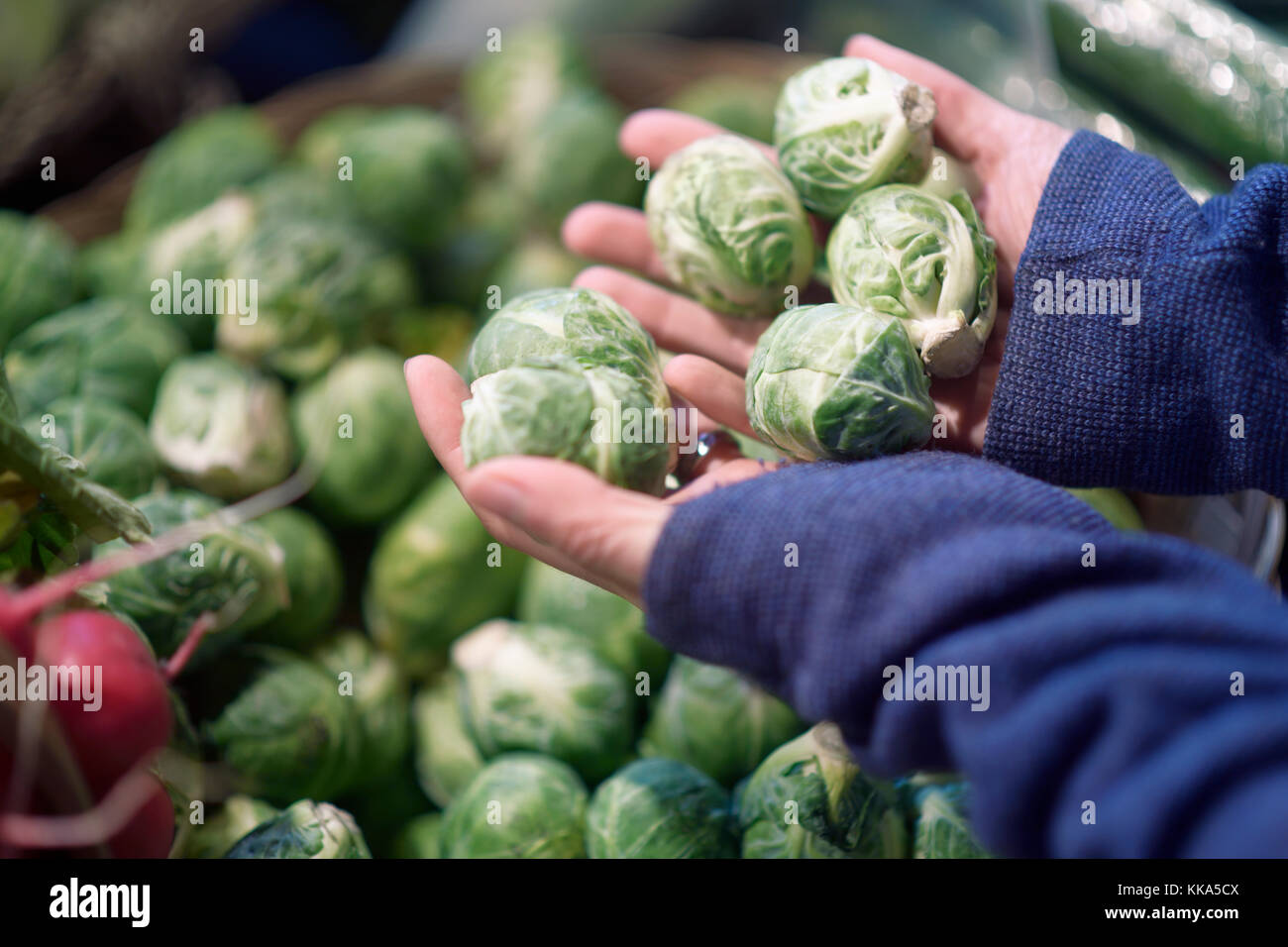Woman hands with locally grown organic brussels sprouts at a vegetable stall of a farmer's market grocery store Stock Photo