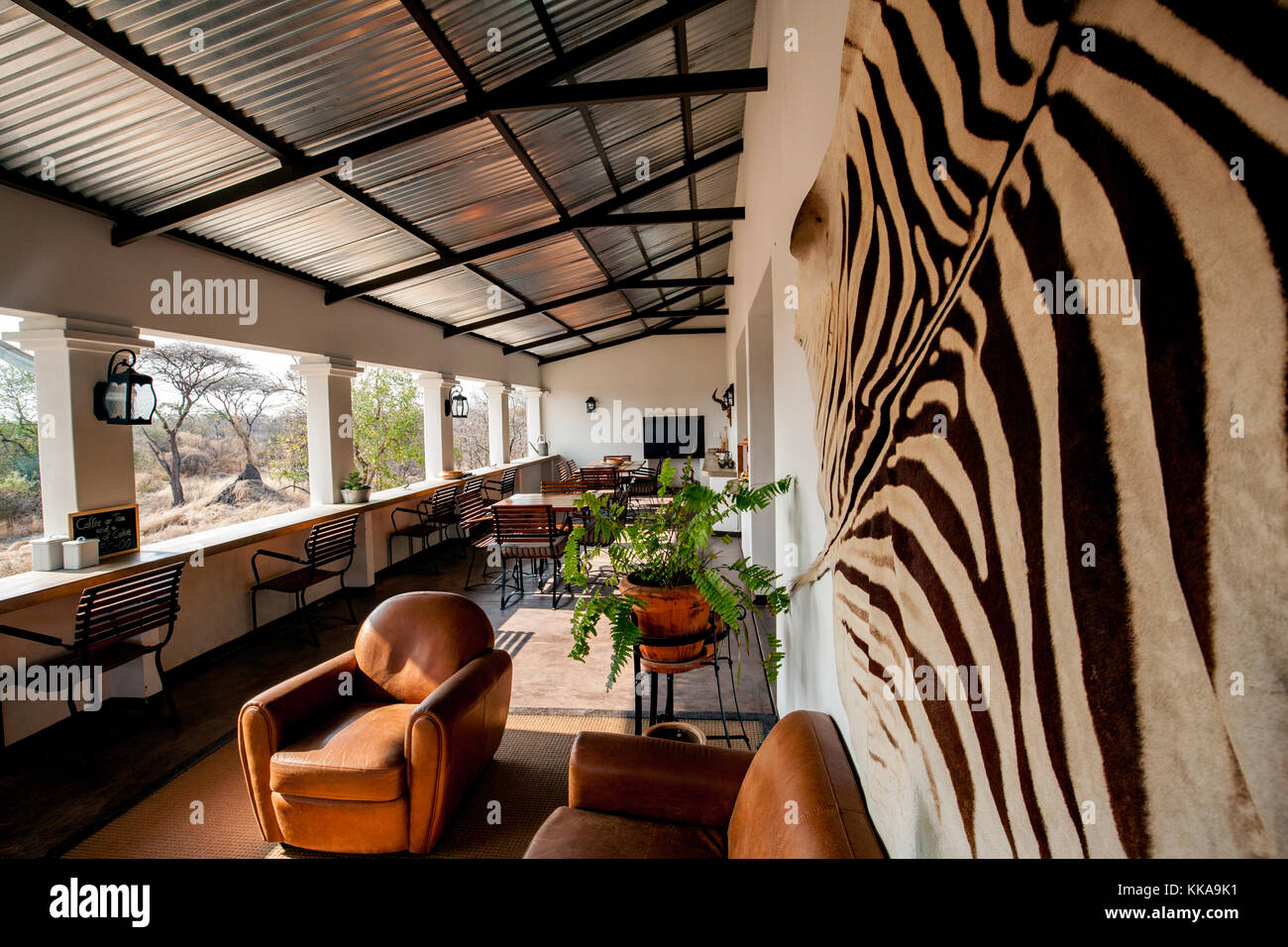 Reception area at Tamboti Luxury Campsite, Onguma Game Reserve, Namibia, Africa - Stock Image