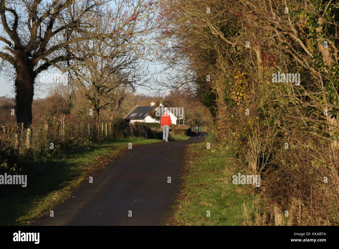 Scarva, County Down, Northern, Ireland. 29th Nov, 2017. UK weather - despite the odd shower, sunny spells and clearing - Stock Image