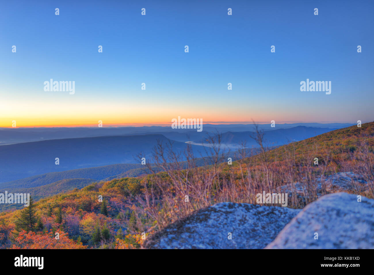 Morning dark sunrise with sky and golden yellow orange autumn foliage in Dolly Sods, Bear Rocks, West Virginia with Stock Photo