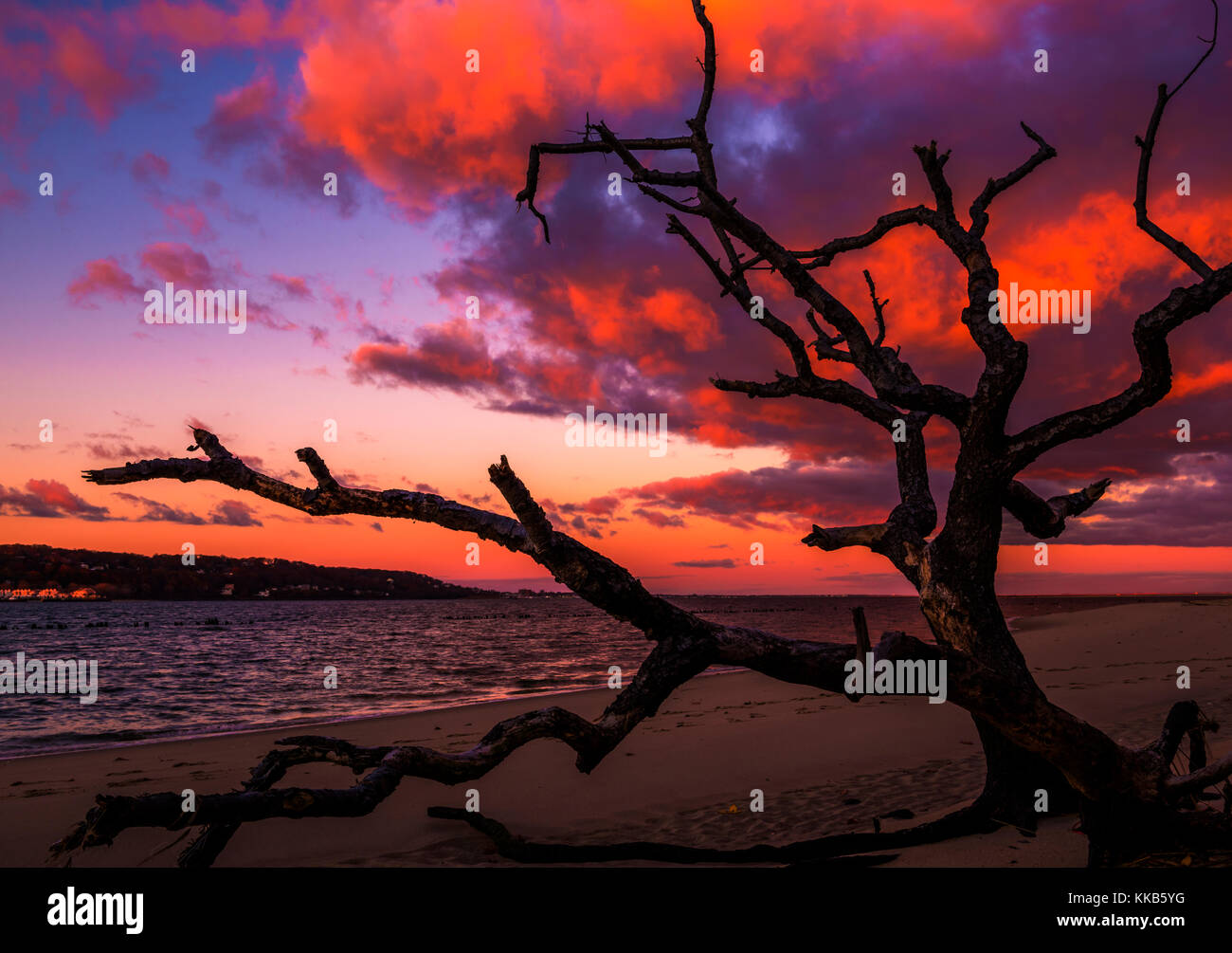 Mystical sunrise on the beach. The sunrise colors the clouds in brilliant vivid colors at Sandy Hook Bay, New Jersey - Stock Image