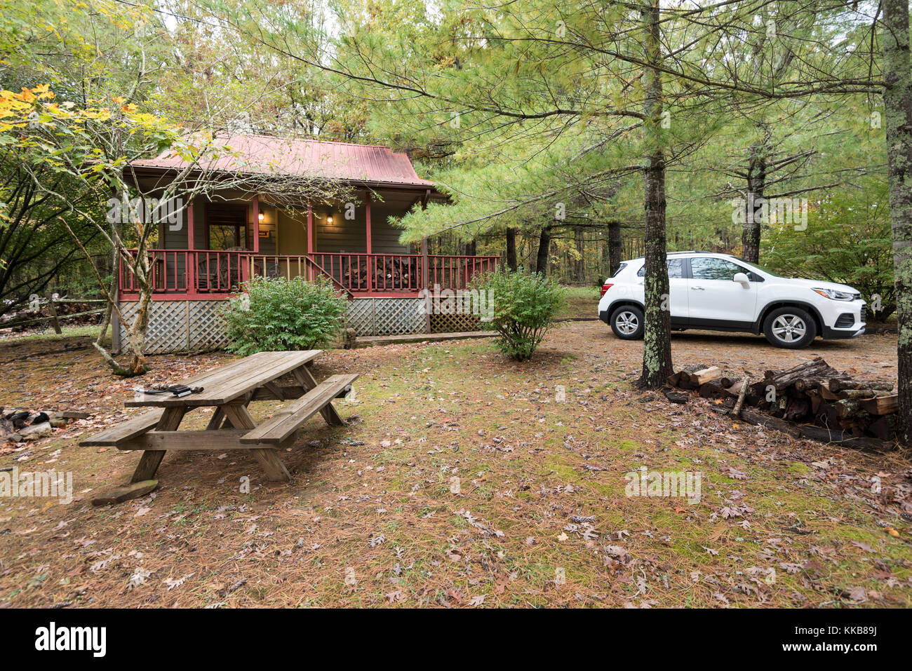 Holiday cabin in the woods - Stock Image