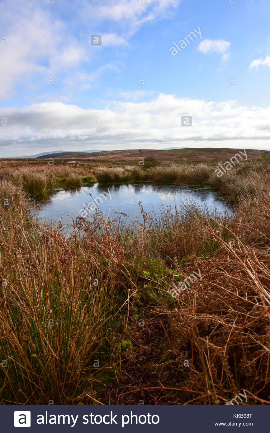 Pool in moorland - Stock Image