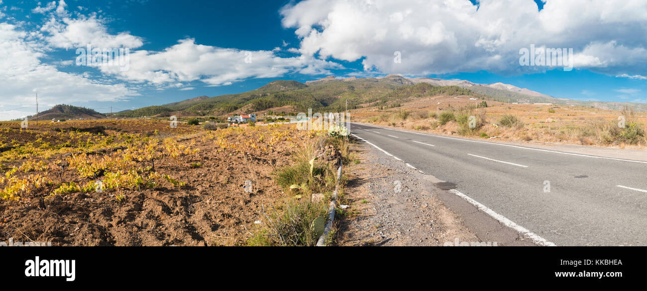 The road to Vilaflor from Arona, through one of the wine-producing areas of Tenerife with field of vines after harvesting - Stock Image