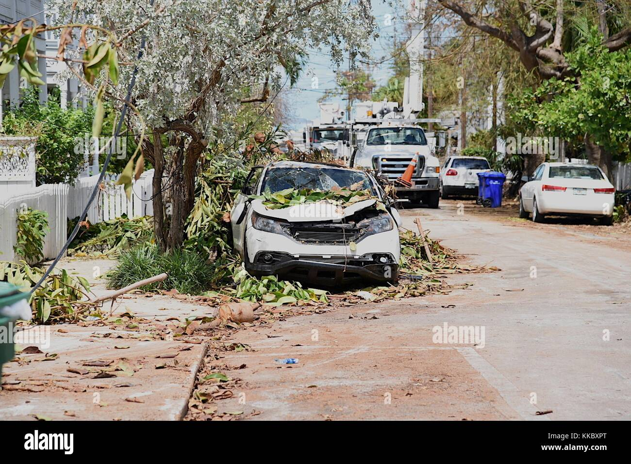 Utility trucks work to restore power during relief efforts in the aftermath of Hurricane Irma September 15, 2017 - Stock Image