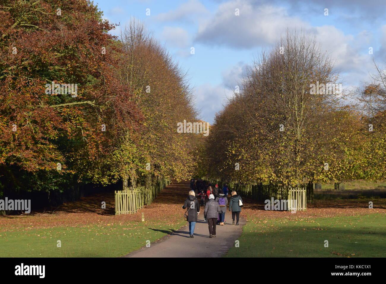 Dunham Massey People Walking - Stock Image
