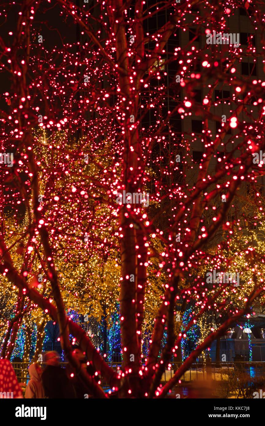 Temple Square Salt Lake City Christmas Lights.Christmas Lights At Temple Square Salt Lake City Utah