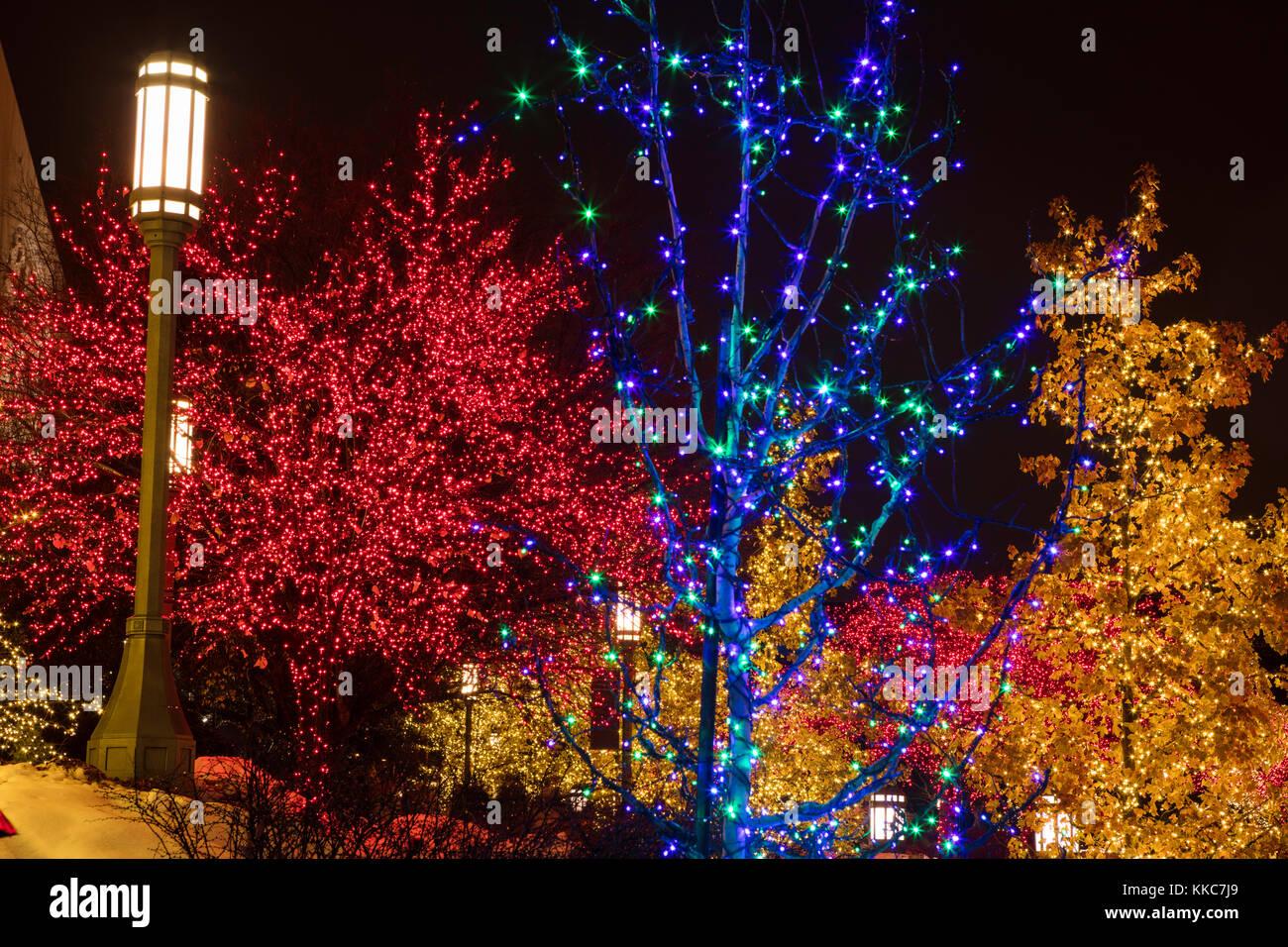 Christmas Lights At Temple Square, Salt Lake City, Utah