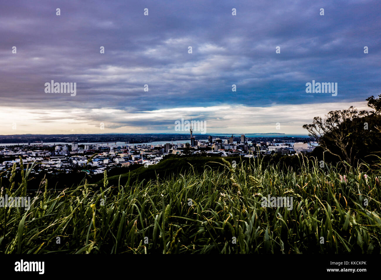 Auckland city views from mt. Eden - Stock Image