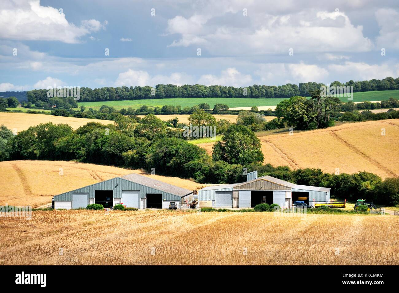 Modern agricultural barns and farmland farm crop fields in the rural chalk downs landscape of Wiltshire. Near Avebury. - Stock Image