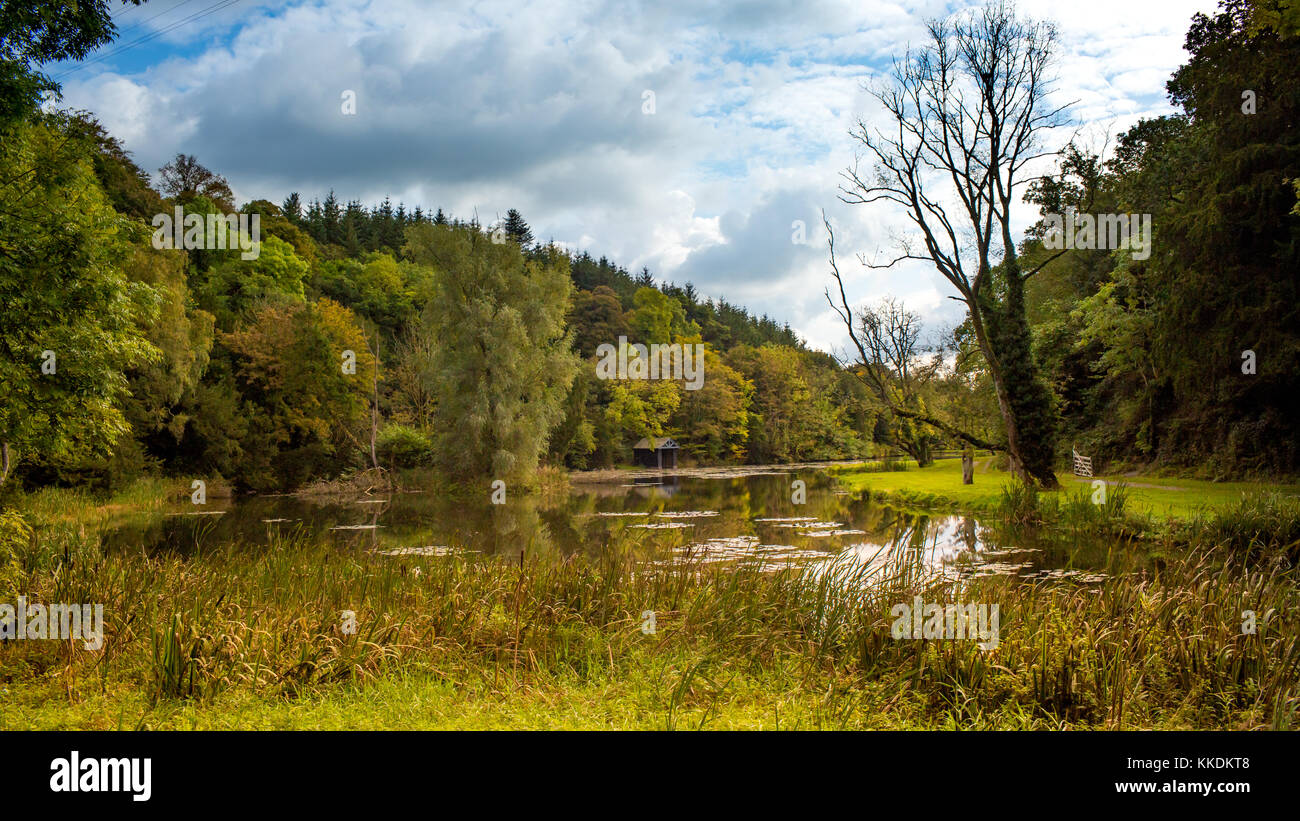 Scenic view at lake with boat house surrounded by stunning woodland in Castlecomer Discovery Park, co. Kilkenny, - Stock Image