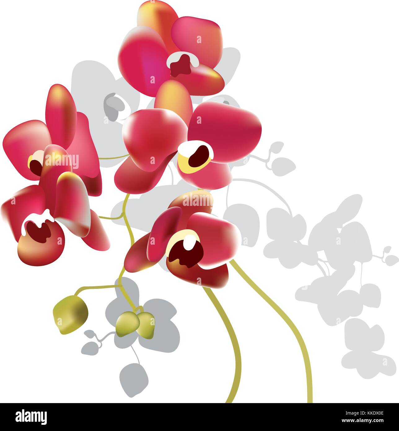 Pink Orchid Stock Vector Images - Alamy