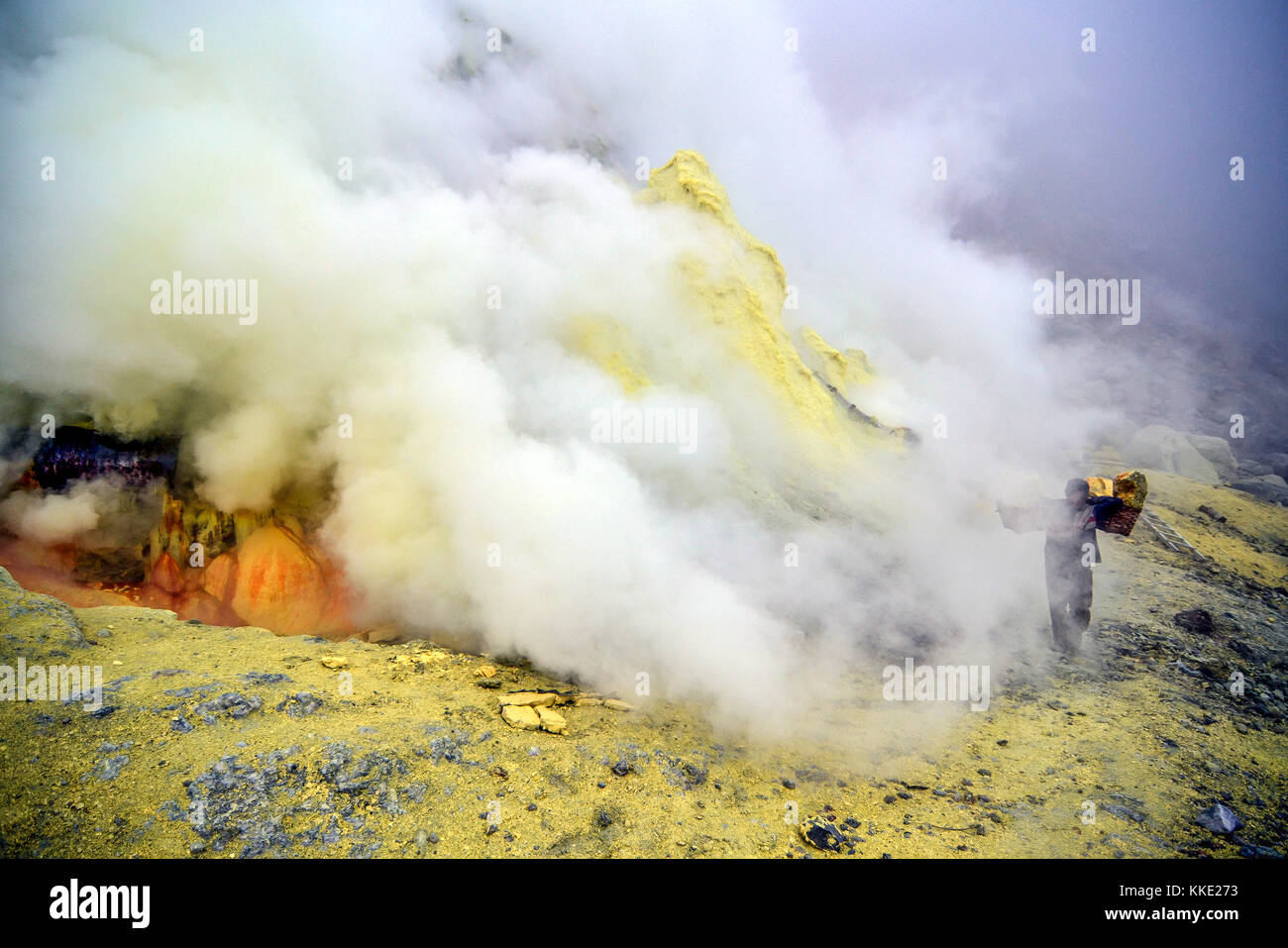 Sulfur Miner of Kawah Ijen walking beside the smoke from the volcano. The smoke are toxic Sulfur Dioxide gas which - Stock Image