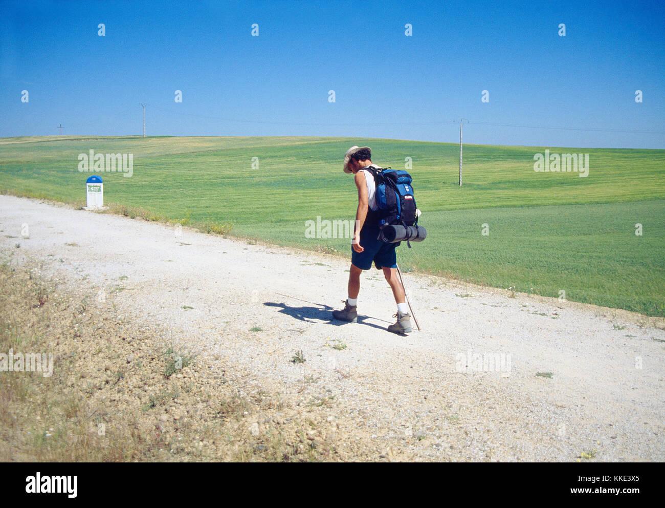 Pilgrim walking along Camino de Santiago. Palencia province, Castilla Leon, Spain. - Stock Image