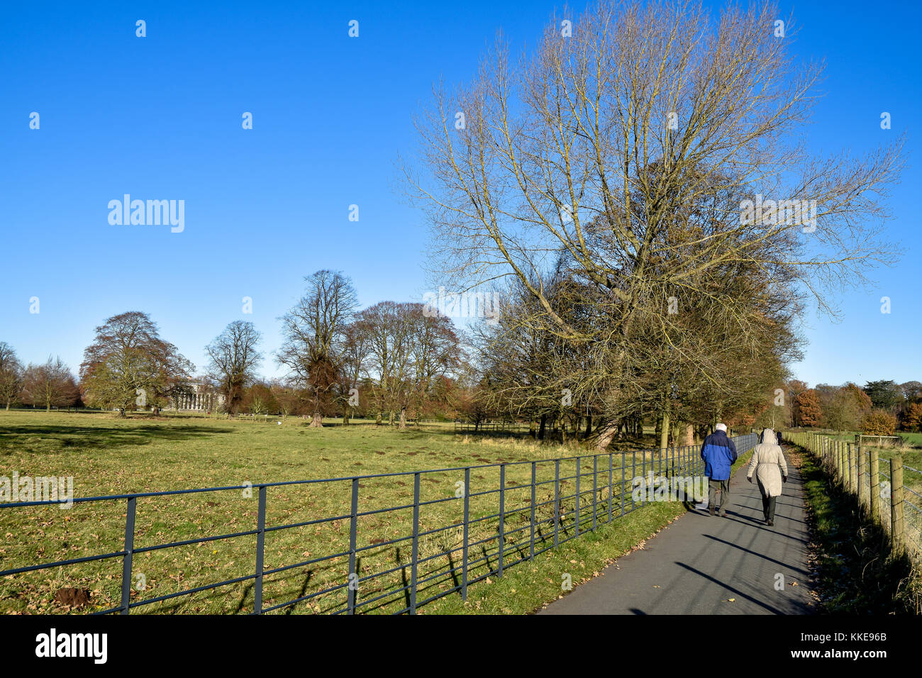Walkers on the outskirts of Shugborough Hall in Staffordshire on a cold winters day in November, 2017 - Stock Image