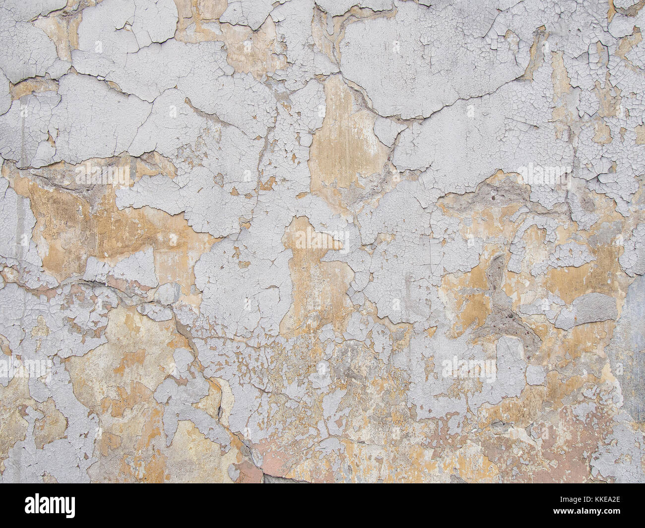 Scuffed plaster wall background - Stock Image