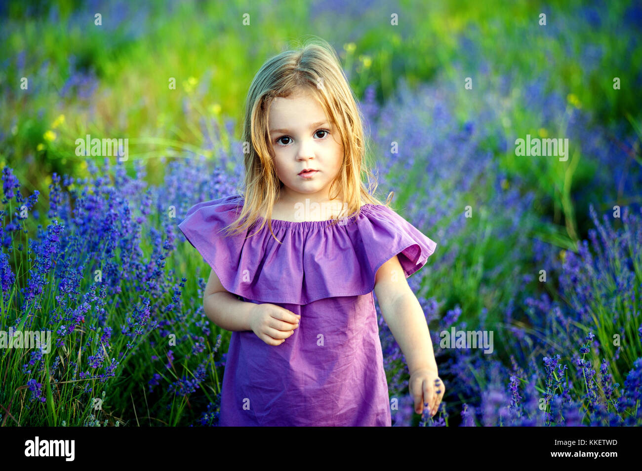 fa595887f3b3 Little girl little girl in a pink dress looking hurt and sad look, in the  summer on a flowering field background