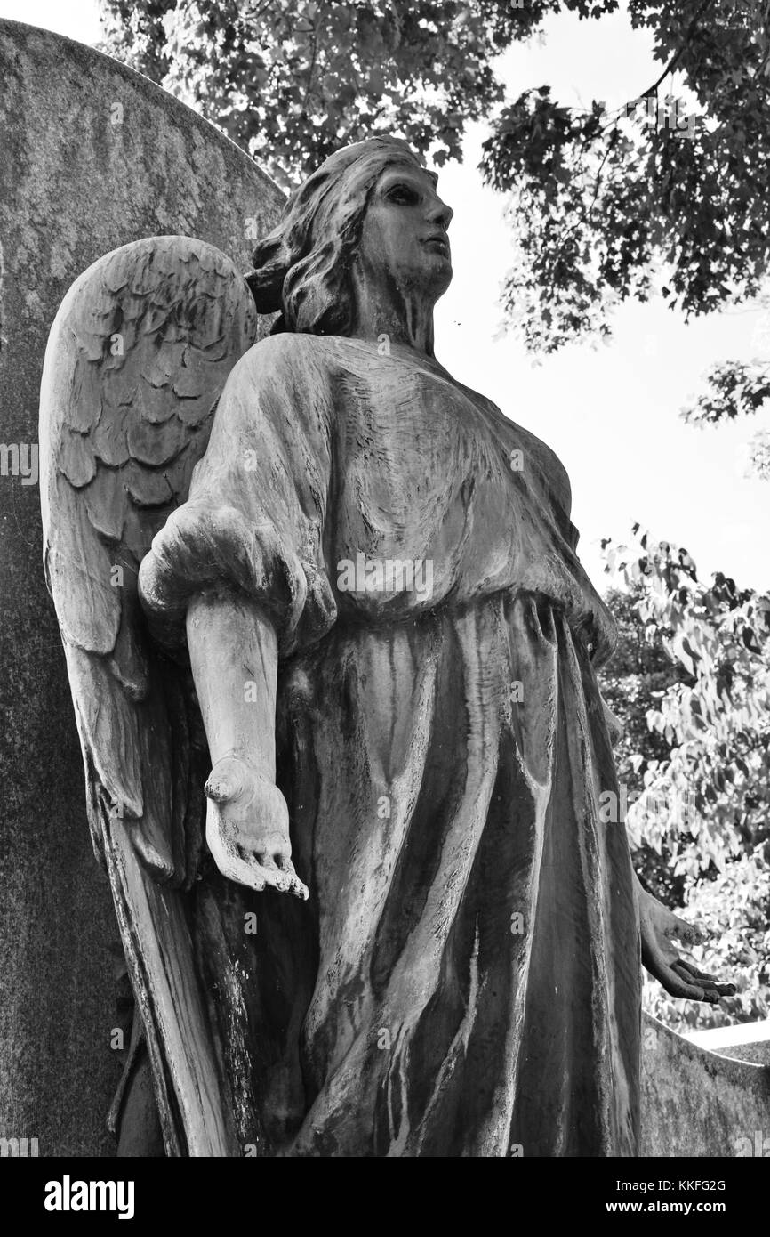 'Tis sorrow indeed when the angel of mercy weeps for thee. - Stock Image