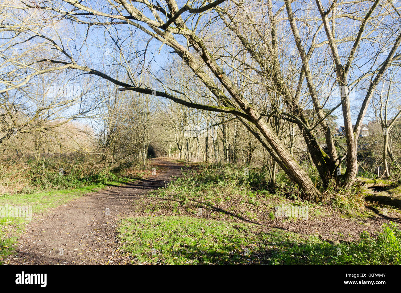 Footpath alongside the River Avon on the outskirts of Stratford-upon-Avon, Warwickshire, UK - Stock Image