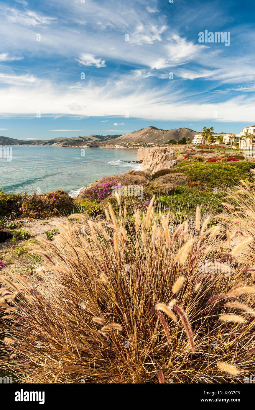 Pismo Beach, Shell Beach oceanview from Spyglass Inn hotel on Highway 1, California, USA. Tall grass in the foreground. - Stock Image