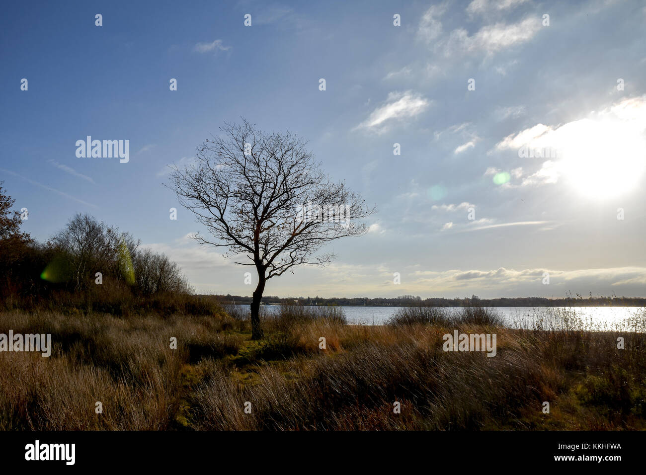 Cannock, Staffordshire. 1st Dec, 2017. UK Weather. The shoreline in places remains frozen at Chasewater in Staffordshire - Stock Image