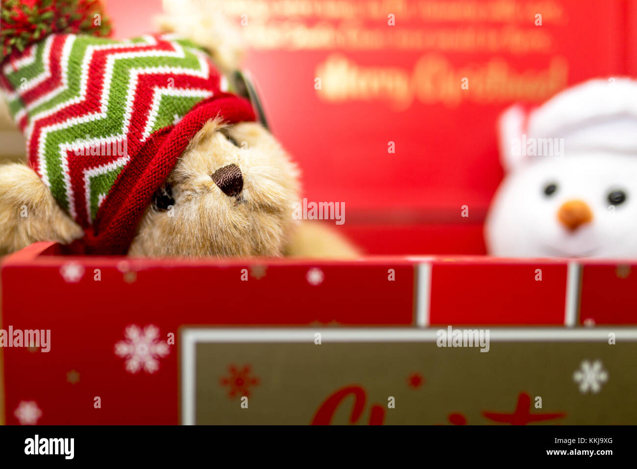 Vintage festive brown teddy bear wearing a woolly hat in a red Christmas gift box with a soft cuddly toy snowman - Stock Image